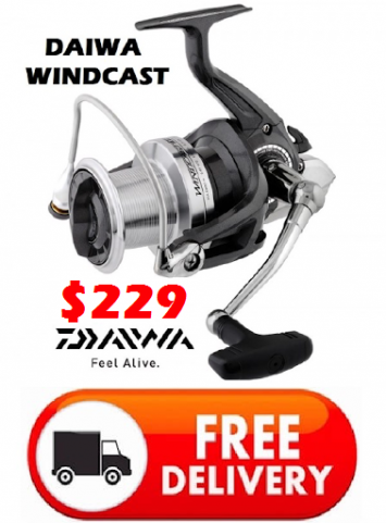 Daiwa Windcast X5500 - Mid Year Sale $229 -Ray & Anne's Tackle